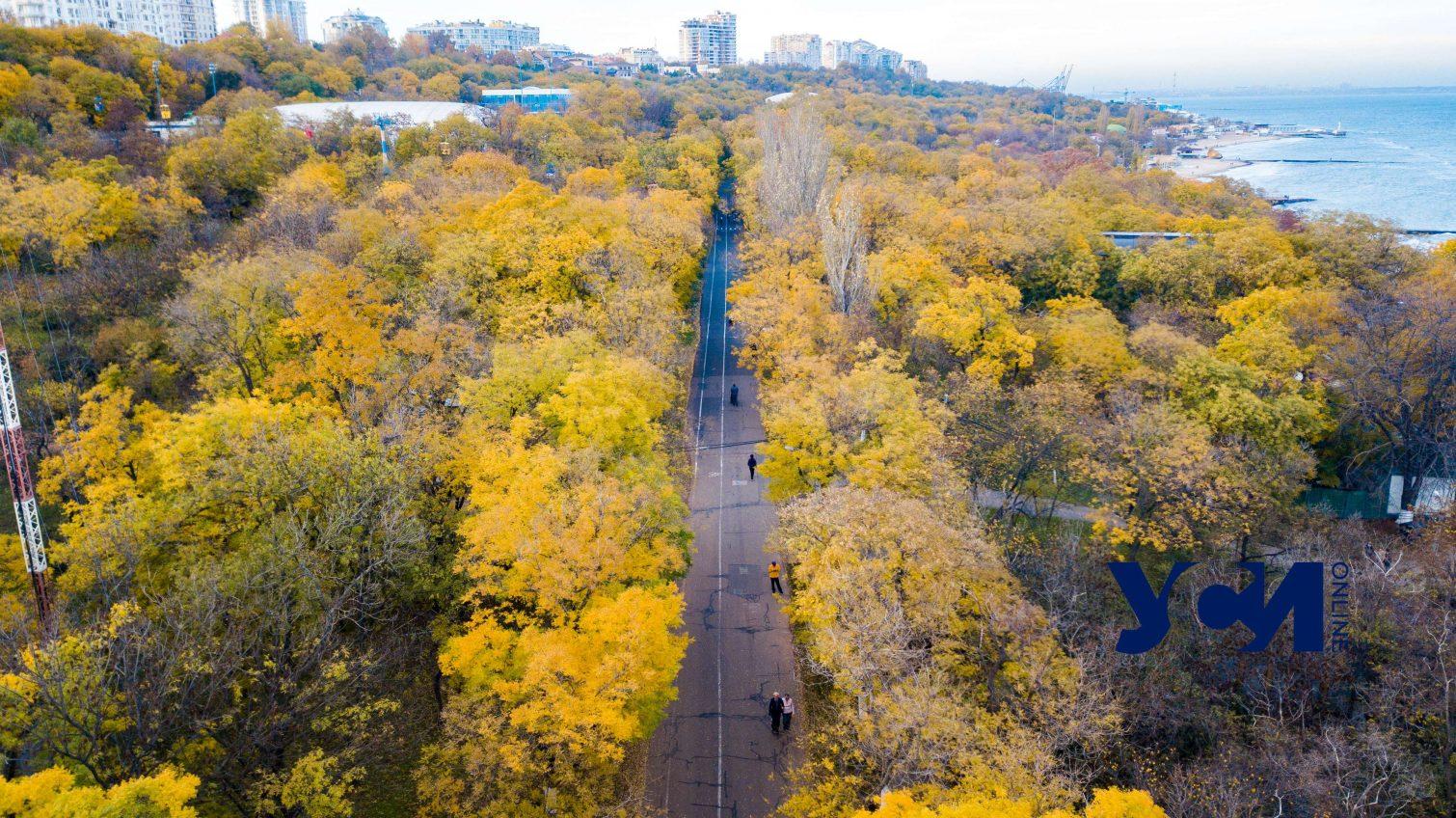 Синоптики: в среду в Одессе и области похолодает «фото»