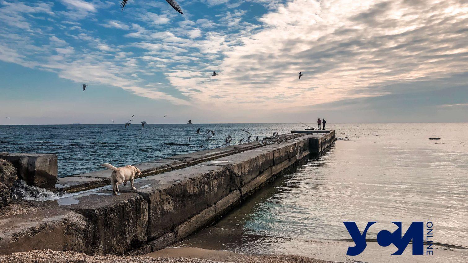 В пятницу Одессе обещают солнечную погоду «фото»