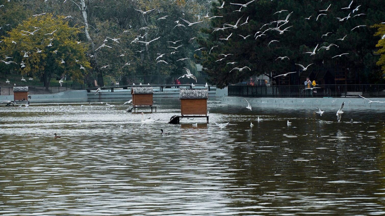 Понедельник в Одессе будет солнечным и прохладным «фото»