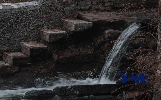 Осенние контрасты Дюковского парка (фото) «фото»