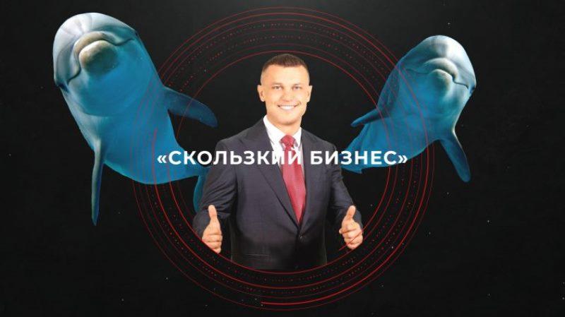 Что творится с дельфинарием новоизбранного депутата Кисловского «фото»