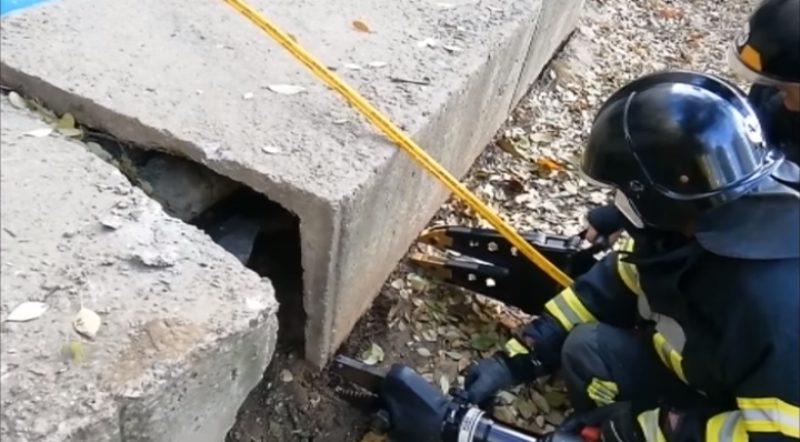 Спасатели освободили из ловушки рыжего пса на поселке Котовского «фото»