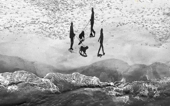 Шикарный кадр: одессит победил на международном конкурсе «фото»