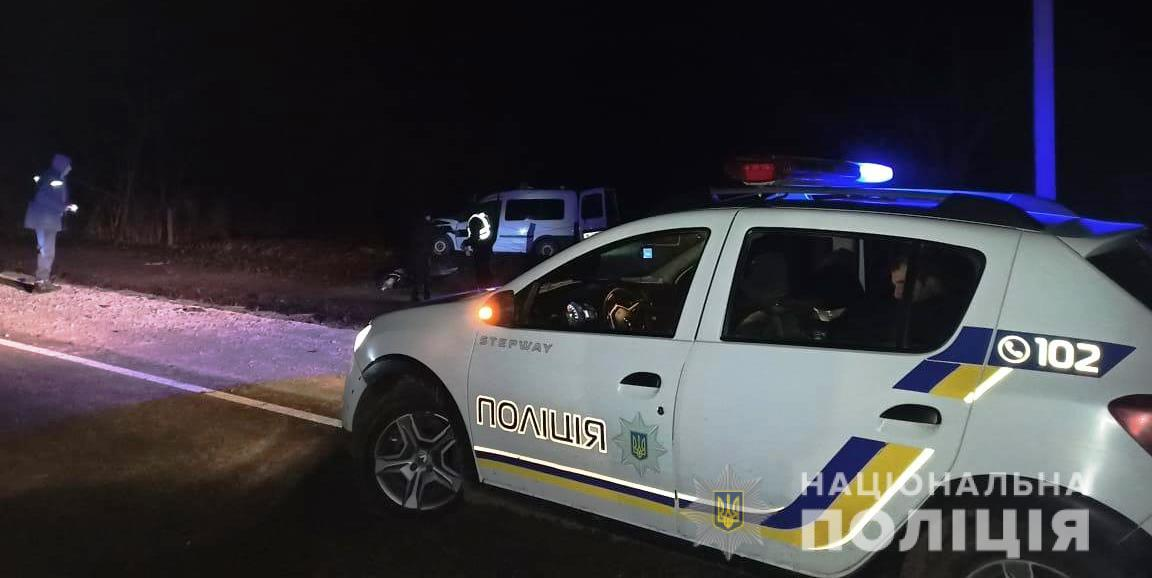 В Одесской области автомобиль столкнулся с конем: водитель и животное погибли (фото) «фото»