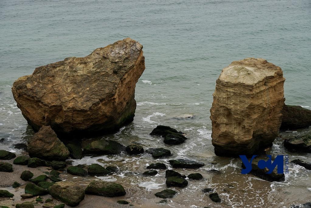 Зимний дзен: прогулка по безлюдным пляжам Фонтанки (фото) «фото»