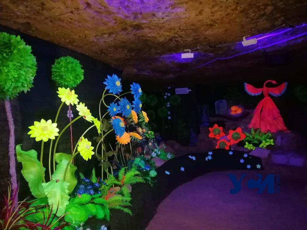 Подземное арт-пространство под Одессой признали самым большим в Европе (фото) «фото»