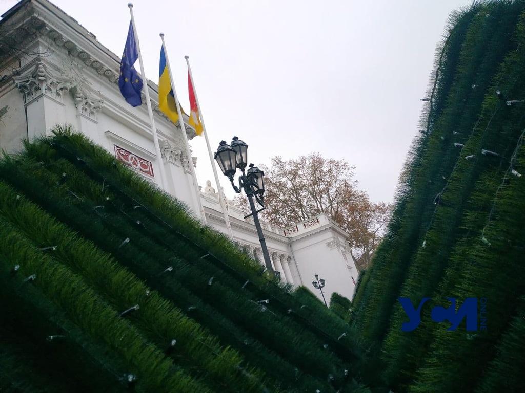 На Думской площади устанавливают главную елку города (фото) «фото»
