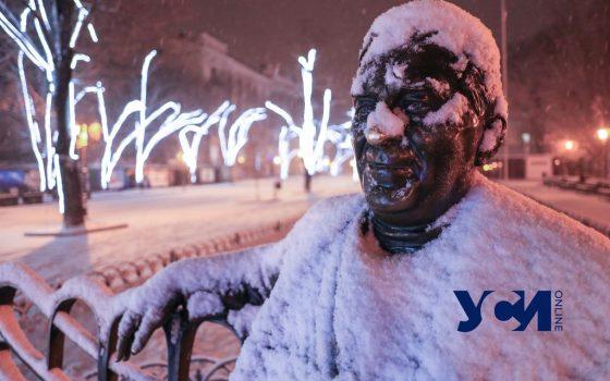 Два одесских музея проведут бесплатные онлайн-экскурсии «фото»