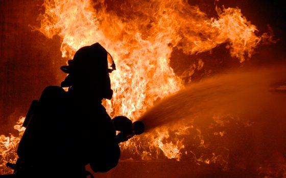 В Лиманском районе сгорели две коровы и 40 кур «фото»