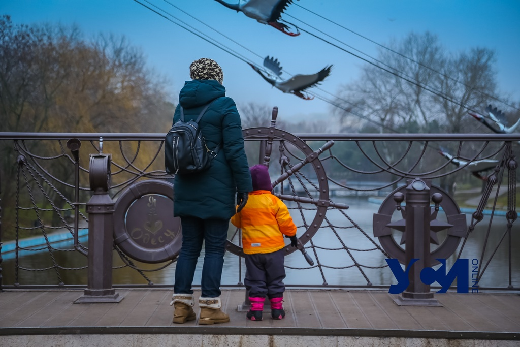 Зима в Одессе: прогулка по туманному парку Победы (фото) «фото»