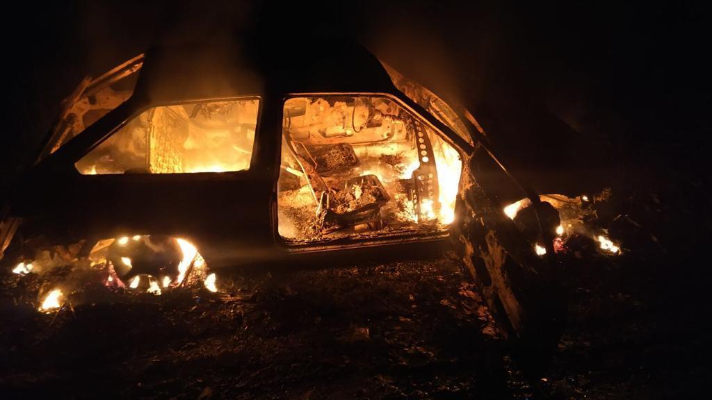 В погранзоне под Аккерманом сгорела машина неудачливых «черных лесорубов» (фото) «фото»
