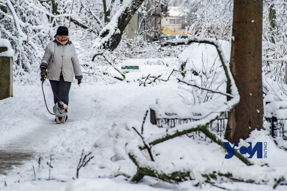 В воскресенье в Одессе похолодает «фото»