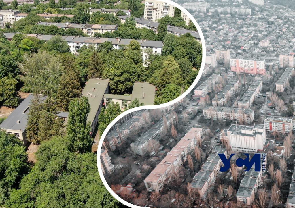 Черемушки с высоты: сравниваем район зимой и летом (фото) «фото»