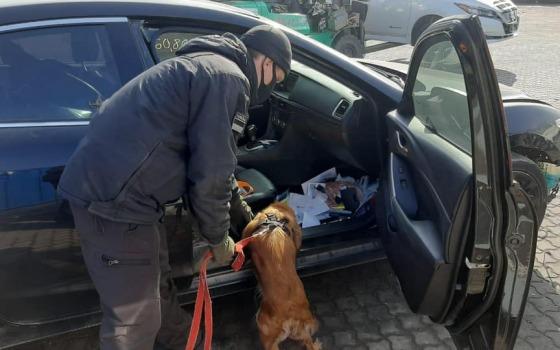 Пограничники нашли более 300 патронов в машинах из США (фото, видео) «фото»