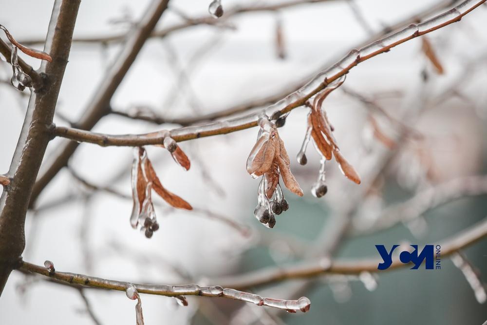 Во вторник будет морозно, но без снега «фото»