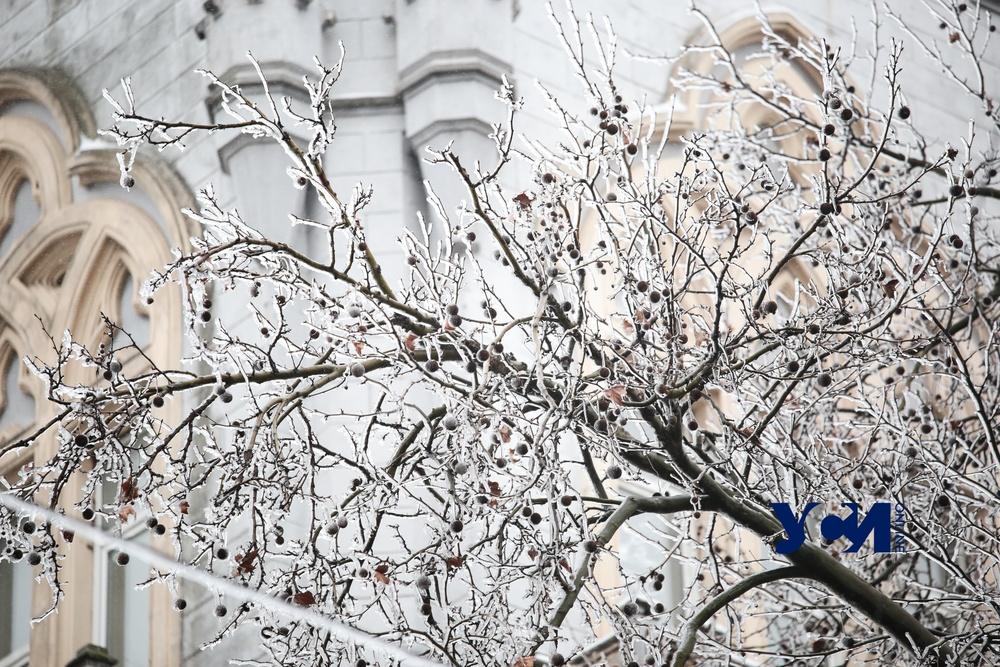 Одесса во льду: как город провел день (фото) «фото»