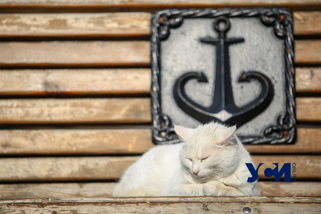 Почти весна: прогулка по старой Одессе в солнечный день (фото) «фото»
