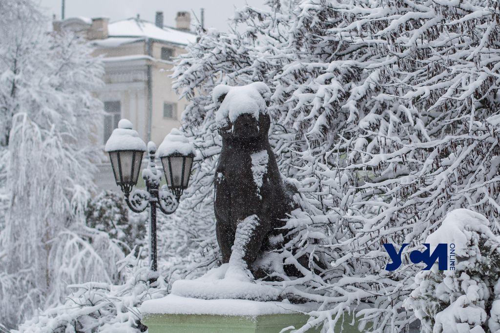 Зима возвращается: одесситов ждет метель и гололед «фото»