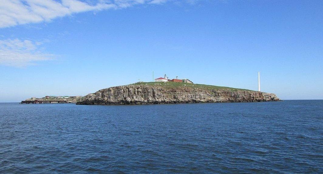 На острове Змеиный хотят построить ветряную электростанцию «фото»