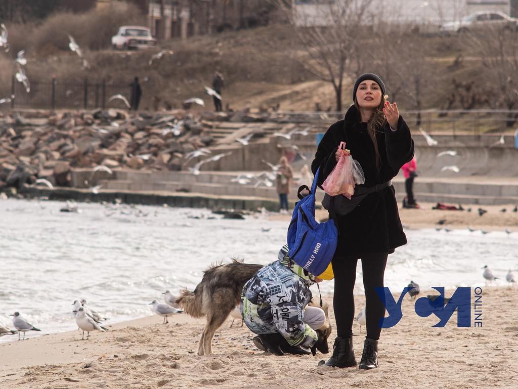 Сегодня в Одессе будет солнечно, но холодно «фото»