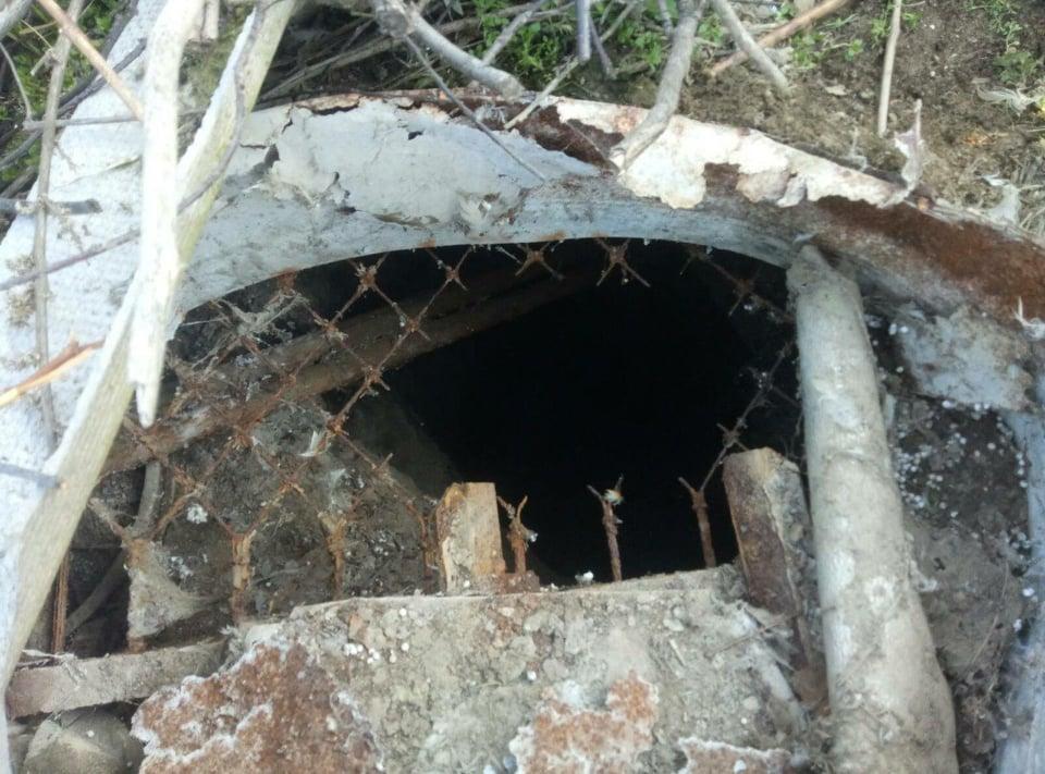 В Одесской области спасатели достали собаку из сливной ямы (фото) «фото»