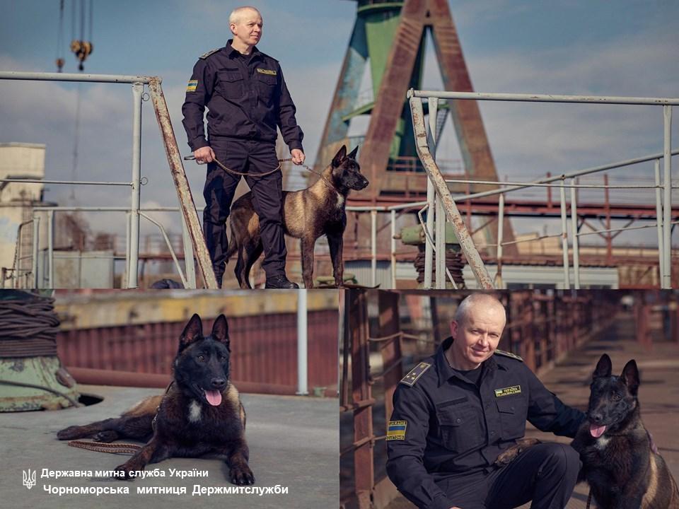 Черноморские таможенники обзавелись ценным «сотрудником» — псом Хазаром «фото»