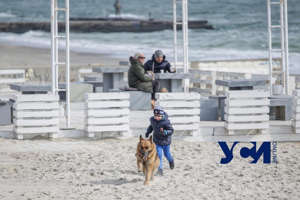Одесское море в марте: волны, счастливые горожане и довольные собаки (фото) «фото»