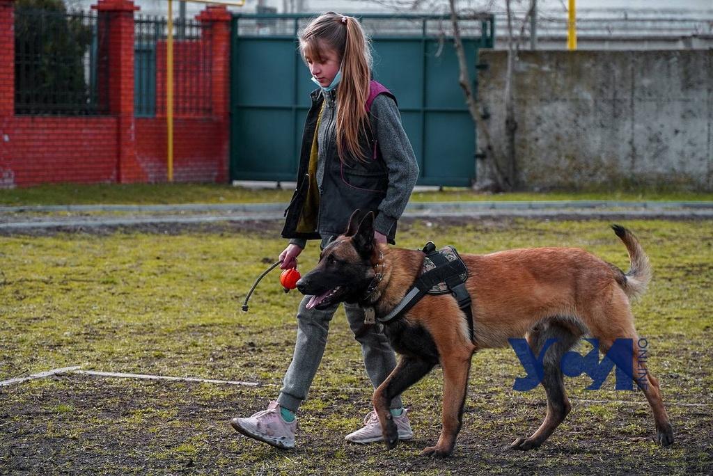В Одессе с помощью собак реабилитируют особенных детей (фото, видео) «фото»