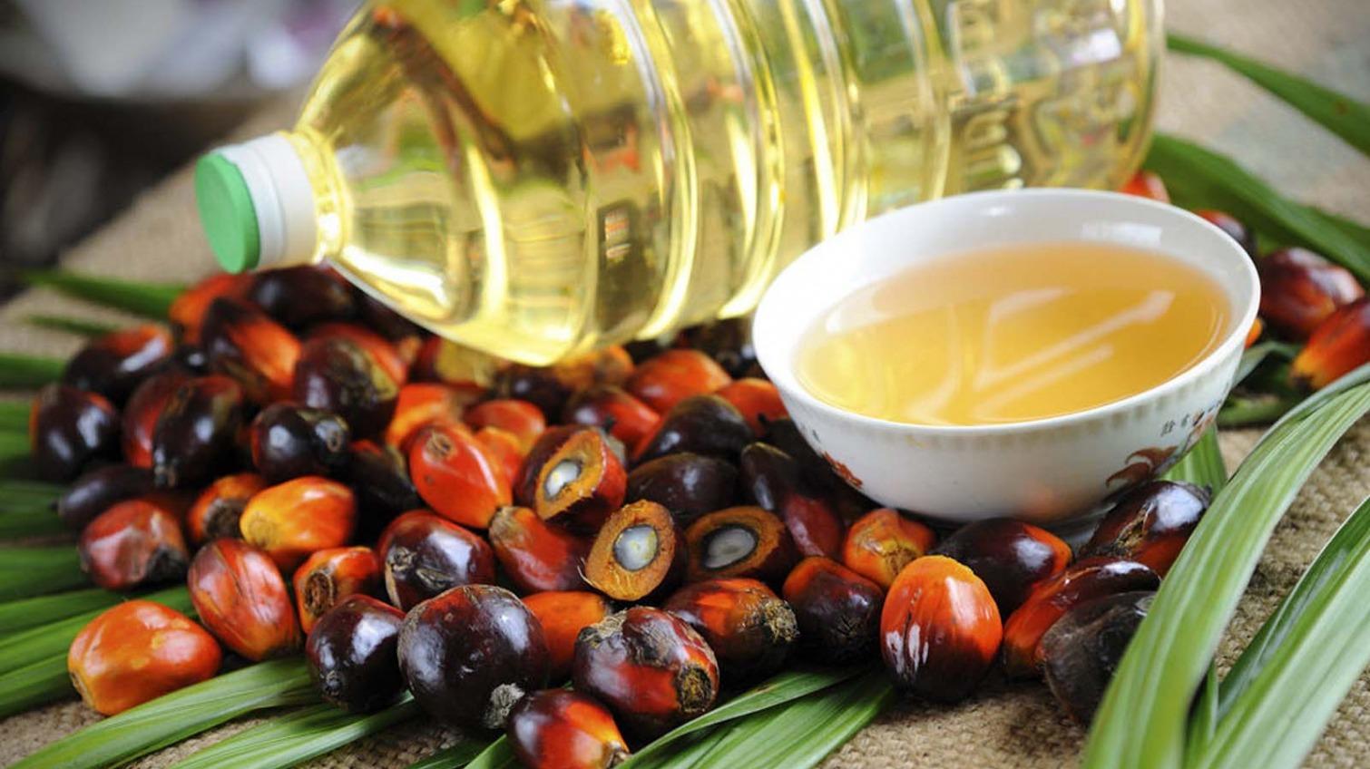 В Одесскую область могли ввезти масло с канцерогеном «фото»