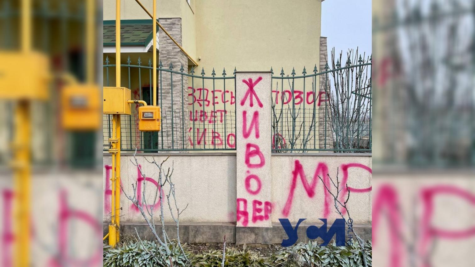 Дело об убийстве кота под Одессой: полиция открыла производство в отношении активистов «фото»