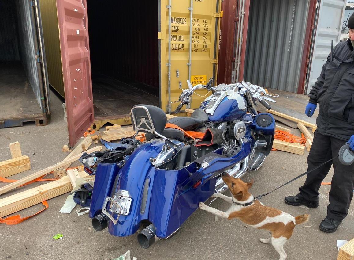 С начала года одесские пограничники изъяли в портах 760 единиц боеприпасов (фото) «фото»