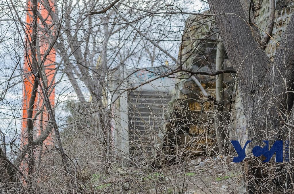 Внутренняя окраина: спуститься с Приморского бульвара и не умереть (фото) «фото»