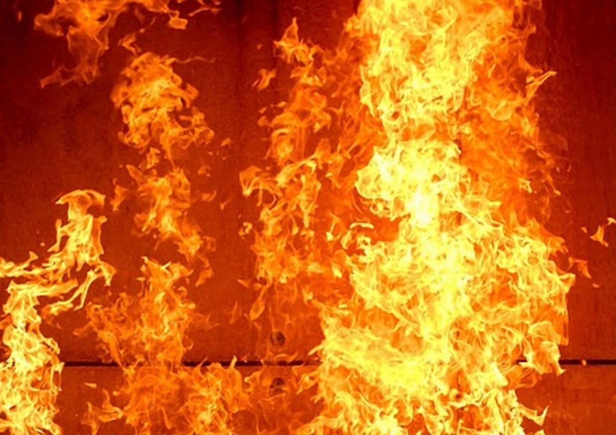 Под Измаилом на пожаре обнаружили погибшую женщину «фото»