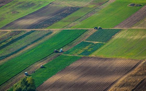 В ОТГ Одесской области могут начать инвентаризацию земель «фото»