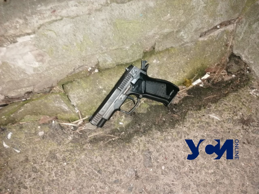 Ночью на Люстдорфской дороге задержали дебошира с пистолетом (фото) «фото»