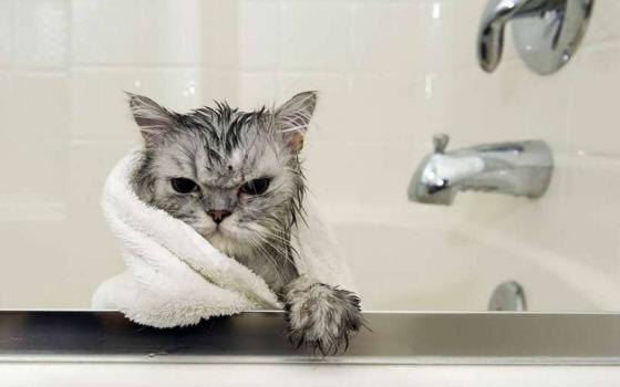 В понедельник пригород Одессы останется без воды «фото»