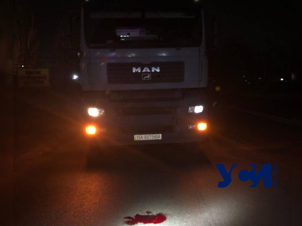 На Старокиевском шоссе грузовик сбил человека «фото»
