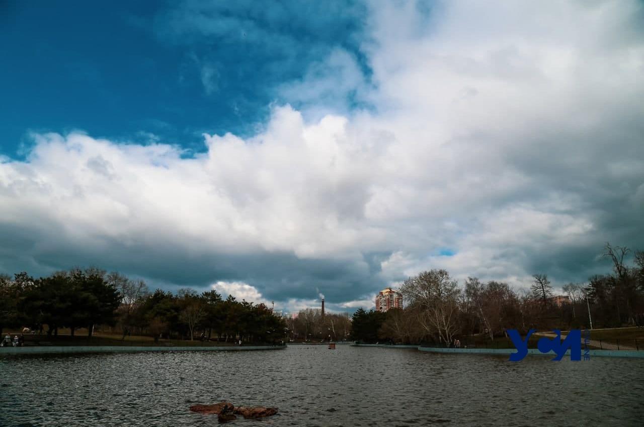 В парке Победы сбрасывали опасные нечистоты – Госэкоинспекция «фото»