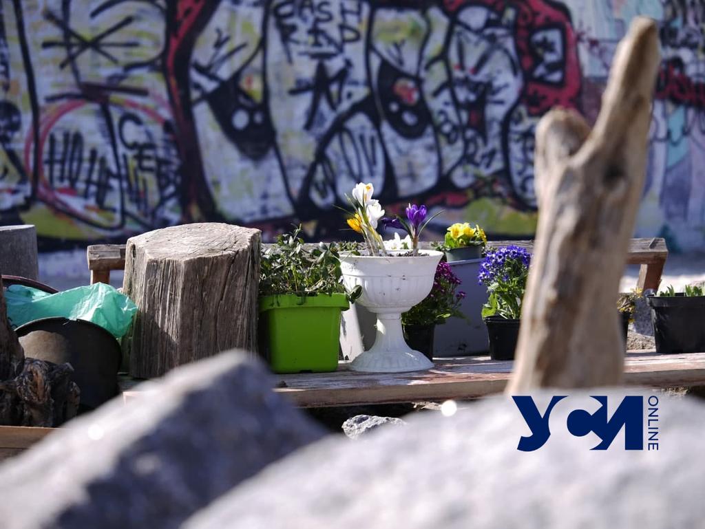 Одессит тратит пенсию на украшение пляжа (фото) «фото»