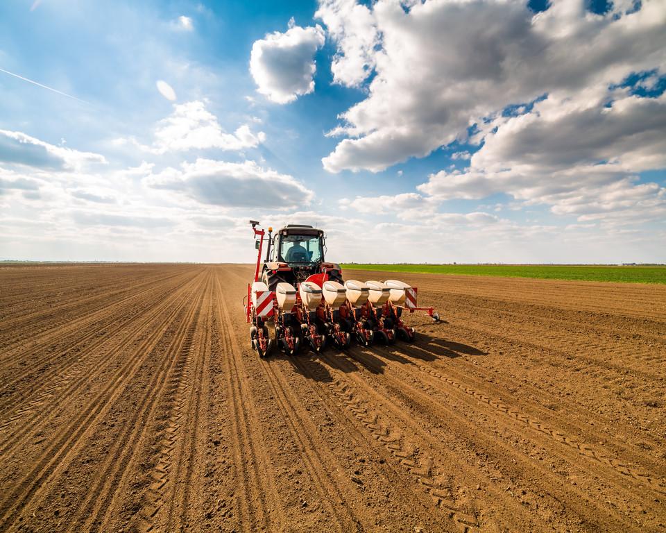В Одесской области посевная идет по плану: ожидается хороший урожай (фото) «фото»