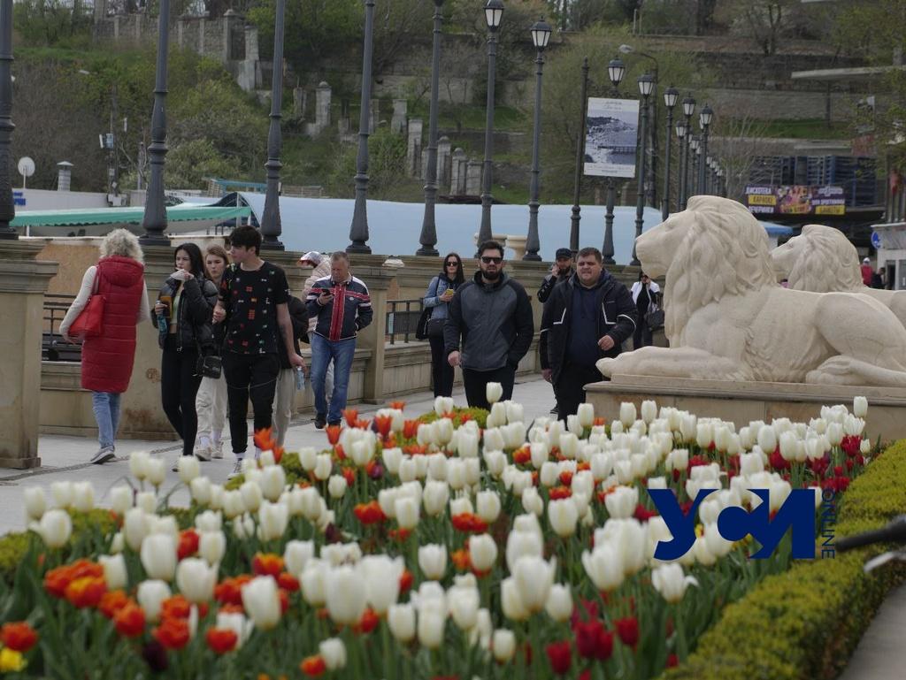 Сегодня в Одессе будет тепло, но пасмурно «фото»