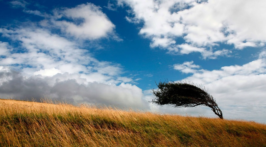 Будьте осторожны: одесситов предупреждают о сильном ветре «фото»