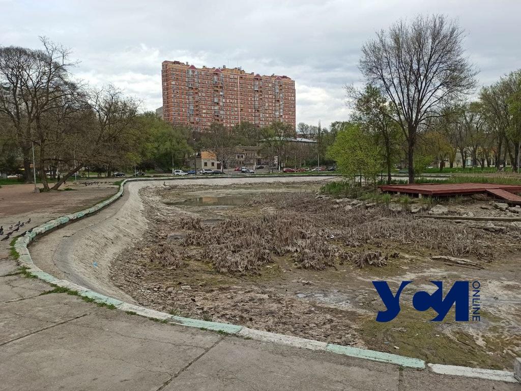 В Дюковском парке снова чистят пруд (фото) «фото»