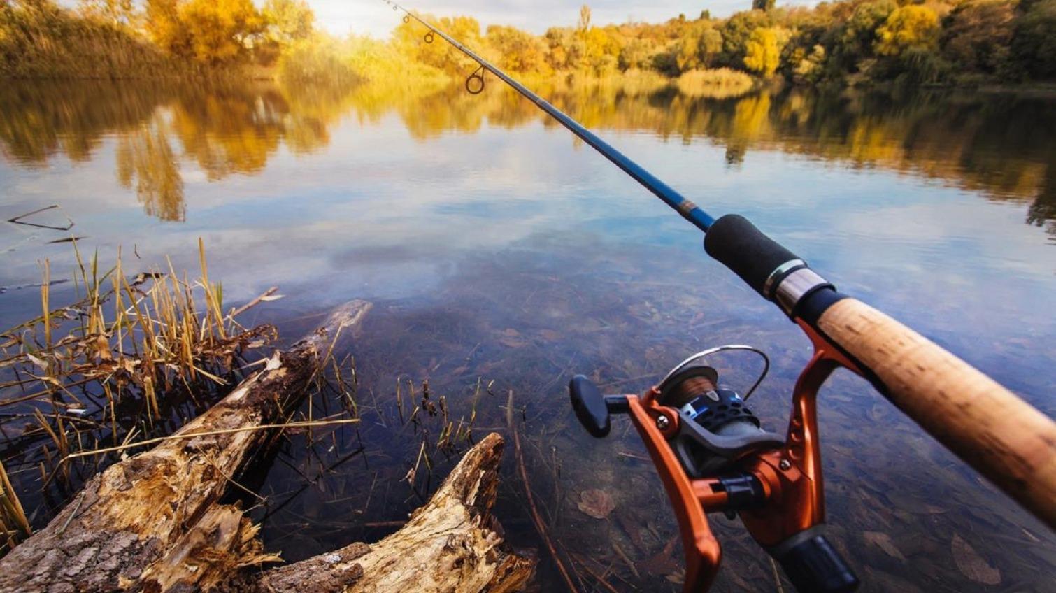 В части Одесской области разрешили рыбачить «фото»