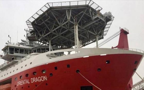 Украинских моряков предостерегают от работы на круизном судне ORIENTAL DRAGON «фото»