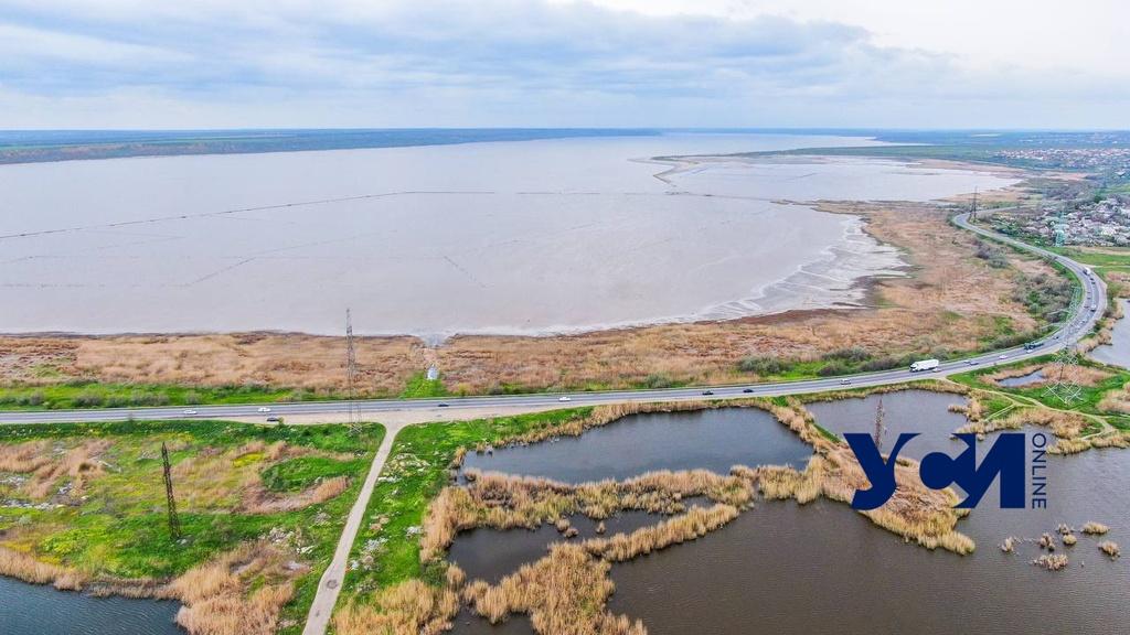 Новая Объездная дорога: экологи говорят об угрозе Куяльницкому лиману (видео) «фото»