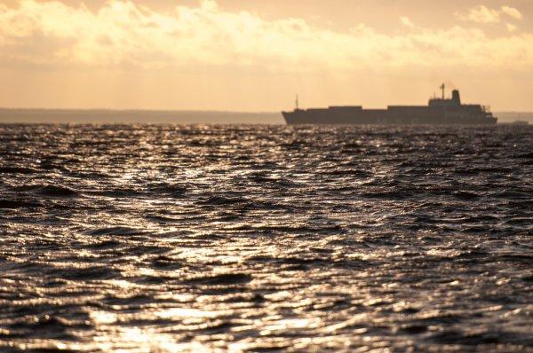 Сертификация моряков: морской профсоюз разработал собственный законопроект (фото) «фото»