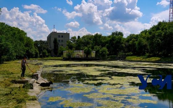 Дюковский сад: история и современность одного из старейших парков Одессы (фото, видео) «фото»