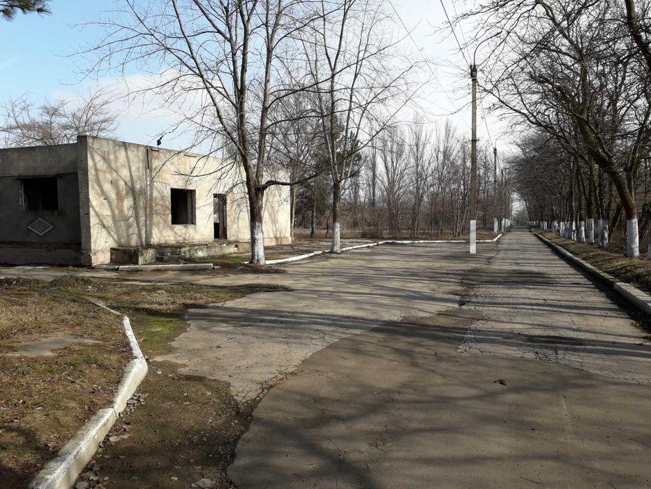 Оздоровительный лагерь «Солнечный» в Сергеевке остался без покупателей (фото) «фото»