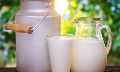 «Простой» продукт: почему скоро в мире будет молоко только определенного типа «фото»